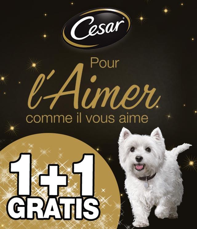 Cashback Cesar 1+1 Gratuit 1+1 Gratuit sur myShopi
